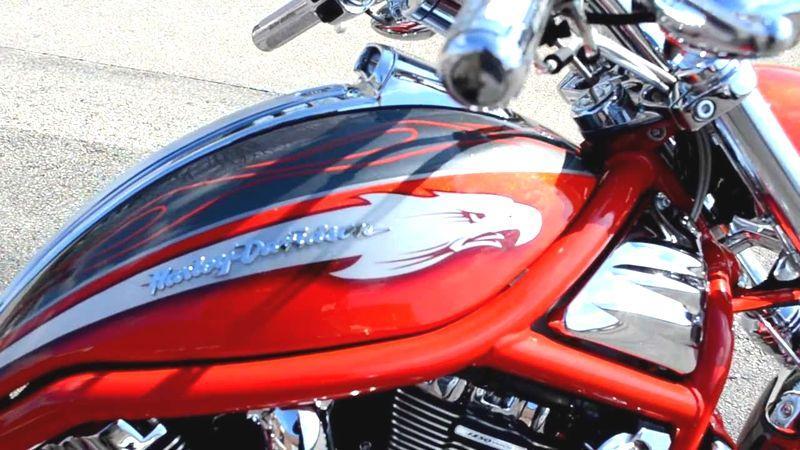 Eagle on Harley-Davidson | Brone